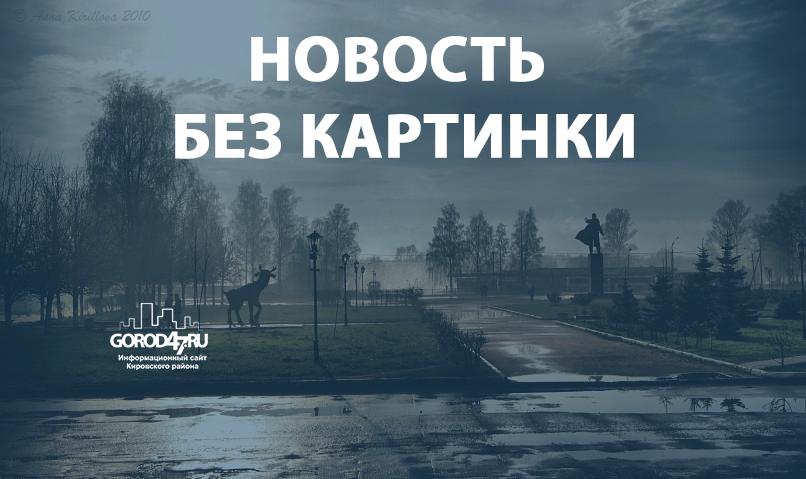 Лежащего на шоссе Кировск-Мга два раза переехали машины