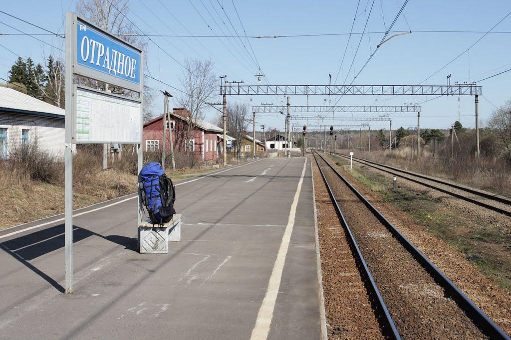 В Отрадном начался ремонт платформы Ивановская