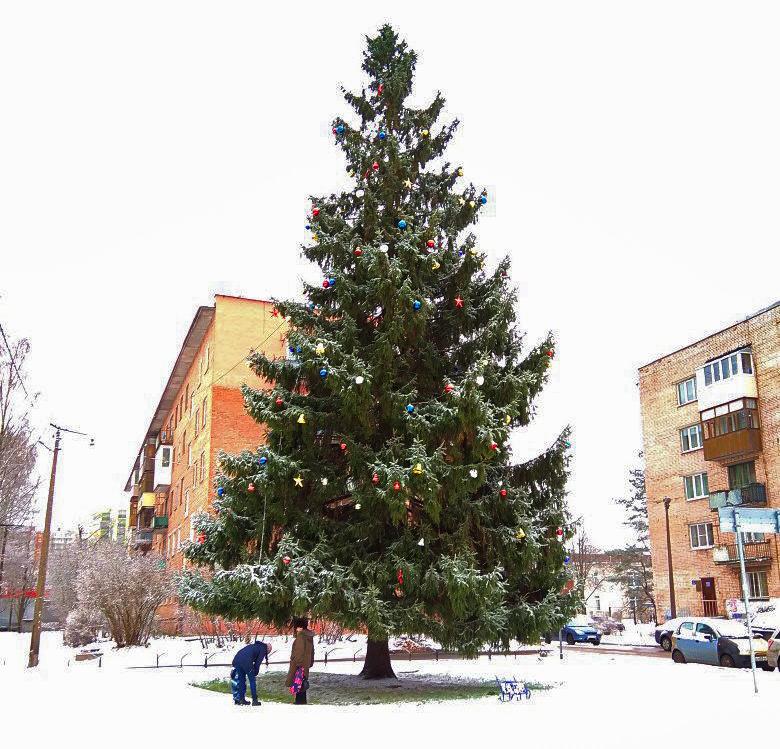 К 25 декабря Кировск полностью украсят к Новому году