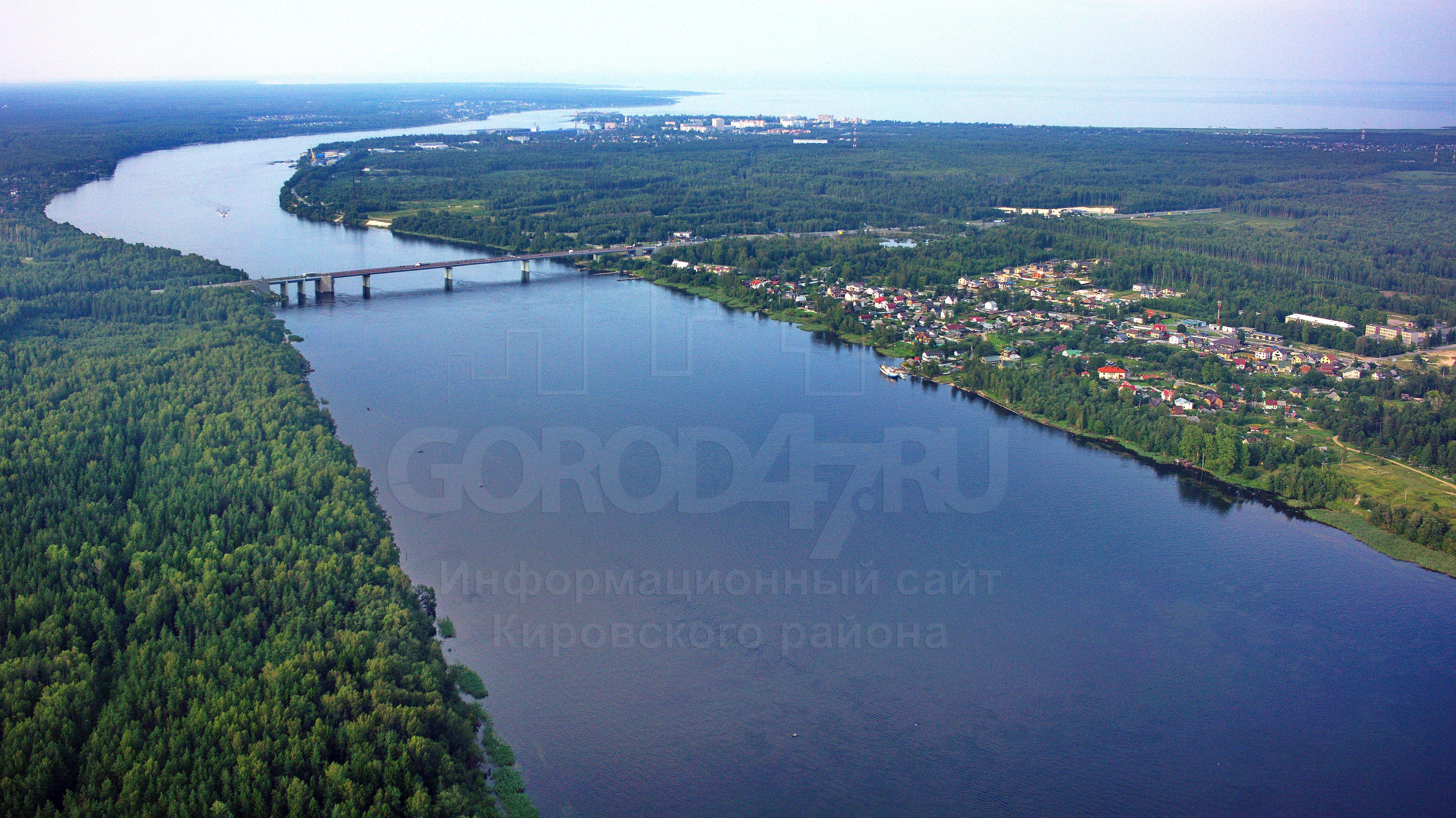 Пролетая над районом «Ладожский мост»
