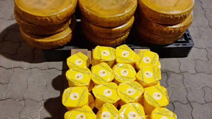 1,5 тонны сыров уничтожили на Выборгской таможне