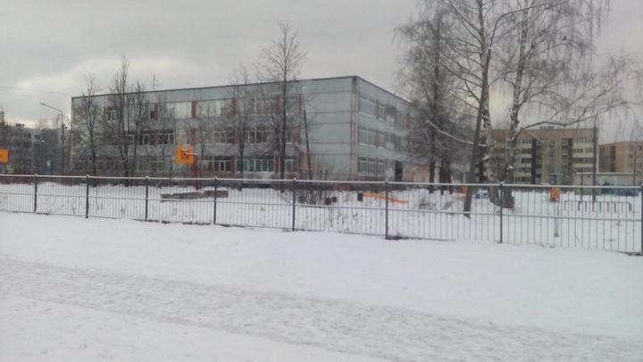Школы Ленобласти с 17 марта переходят, как и городские, на режим свободного посещения.
